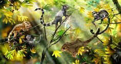 A reconstruction of Jurassic forest mammals, depicting three new species of haramiyidans (from left Shenshou lui, Xianshou linglong, and Xianshou songae) as well as a gliding species and another previously-discovered haramiyidan (right). Illustration: Zhao Chuang