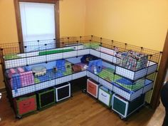 Guinea pig corner cage, dual-level with storage beneath.