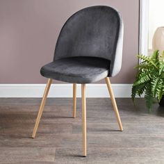 Homesavers | Moden Velour Chair - Grey Grey Dining Room Furniture, Dining Chairs, Festival Shop, Grey Chair, New Homes, Velvet, Colours, Living Room, Elegant