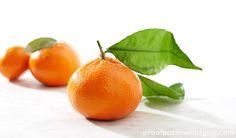 Sunny Murcott Mandarins, a cross between a tangerine and a sweet orange.  http://proofpositiveimaging.photoshelter.com/gallery-image/Food/G0000vxWBxmMXSBY/I0000KUvAdbsW02g/C00004tzArDrbjNQ  © Jennifer Hill, Proof Positive Imaging Photographer Jen Hill