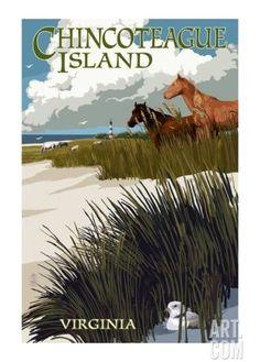 Chincoteague Island Horses