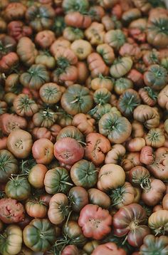 heirloom tomatoes | Flickr - Photo Sharing!