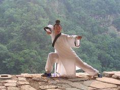 WUDANG DAO - Wudang Internal Taichi and Kungfu - At one with the Dao