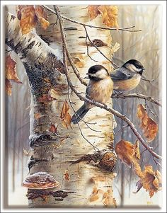 Find More Diamond Painting Cross Stitch Information about Full Square/Round Drill DIY Diamond Pai Painting Corner, Dmc Cross Stitch, Crafts With Pictures, Bird Crafts, Winter Scenery, Cross Paintings, Bird Paintings, 5d Diamond Painting, Diamond Art