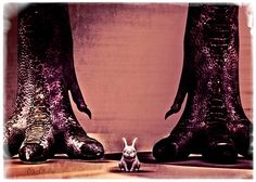 Watch Out Little Bunny - Original art by Bob Orsillo  City Nights - Original fine art photography by Bob Orsillo  Copyright (c)Bob Orsillo / http://orsillo.com - All Rights Reserved.  Buy art online. Buy photography online.   Dinosaur T-Rex Feet