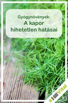A kapor azon növények közé tartozik, melyeknek fogyaszthatóak a magvai és a törzse is. Tartalmaz illóolajat, kalciumot, magnéziumot, vasat, ként és nátriumot, valamint A-, B- és C- vitamint. 60%-ban olyan anyagot tartalmaz, aminek rákmegelőző hatása van. Ismerd meg a kaportea jótékony hatásait, ami 2 kiskanál kapormagból és 250 ml forró vízből készül, csupán néhány percig kell áztatni. Home Remedies, Anti Aging, Medical, Herbs, Healthy, Food, Mother Nature, Medical Doctor, Medicine