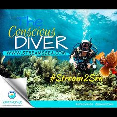 Be a #Conscious #Diver! . At @Stream2Sea We look to educate and inspire fellow outdoor explorers on how their choice in skin care makes an impact on the oceans rivers lakes and streams.... #Stream2Sea #MarineSafety #EcoConscious #Biodegradable #SkinCare #NaturalProducts #NaturalSunscreen #NonToxic #BodyCare #scuba #ScubaGirls #ScubaDiving #UnderwaterLife #SeaLife #CoralReef #ReefProtection #ProtectWhatYouLove #GetInvolved #BeConscious #Adventure #GetOutside #Play #ConsciousExplorer