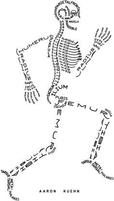The easy way to remember the human skeletal system, . - The easy way to remember the human skeletal system system - Medical Students, Nursing Students, Nursing School Notes, Nursing Schools, Medicine Student, Sports Medicine, Human Anatomy And Physiology, Brain Anatomy, Anatomy Art