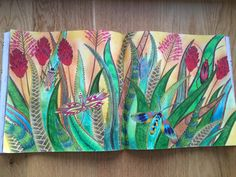 Millie Marotta Tropical Wonderland by me #milliemarotta #tropicalwonderland…