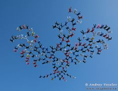 186 skydivers from 24 nations (6 continents) join forces to  build the world's largest picture formation - and set the Florida State record!
