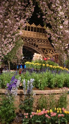 Springtime in Paris............someday my dream will come true