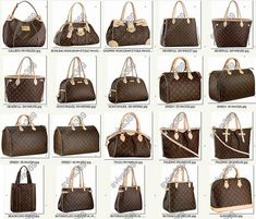 The different shapes if LV bags