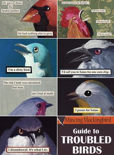 The Mincing Mockingbird Guide To Troubled Birds Bird Meme, Funny Jokes, Hilarious, Bird Quotes, Funny Birds, Bird Art, Funny Comics, Memes, The Funny