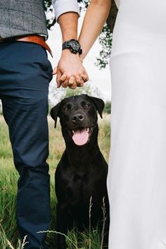 Fun Wedding Photo Ideas That Will Make You Smile Wedding Photos with Dogs Cute Wedding Photo Idea by Emma-Jane Photography. Dog Engagement Photos, Engagement Couple, Engagement Shoots, Country Engagement, Fall Engagement, Dog Wedding, Wedding Pics, Wedding Couples, Funny Wedding Photos