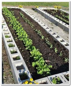31 Awesome Raised Garden Bed Ideas For Backyard Landscaping . - 31 Awesome Raised Garden Bed Ideas For Backyard Landscaping … – # - Small Vegetable Gardens, Small Backyard Gardens, Vegetable Garden Design, Small Gardens, Backyard Landscaping, Backyard Ideas, Vegetable Gardening, Landscaping Ideas, Gardening Hacks