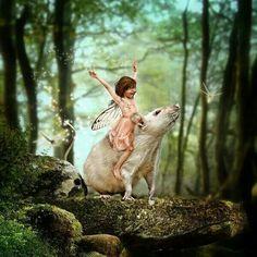 Rattie fairy