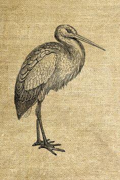 INSTANT DOWNLOAD - Stork Vintage Illustration - Download and Print - Image Transfer - Digital Sheet by Room29 - Sheet no. 1162