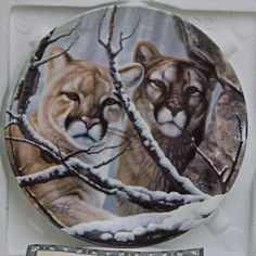 """1993 W. S. George 'Eyes of the Wild' Porcelain Collector Plate, """"Eyes Of Gold"""""""