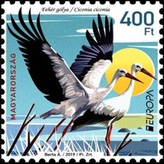 West Art, Vintage Stamps, Stamp Collecting, Ephemera, Postcards, Countries, England, Collections, Birds