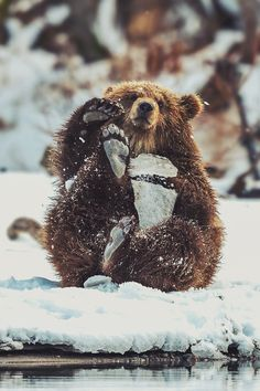 mstrkrftz:    Toy broke | Sergey Ivanov
