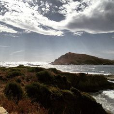 #sky #blue #light #cloud #cloudporn #picoftheday #nature #life #island #isla #centuri #corsica #wildness #amazing #magic #fight #strong #novellaorchidea #novella #orchidea #raccontierotici #racconti #ebook