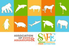 association of zoos and aquariums infographic - Google Search