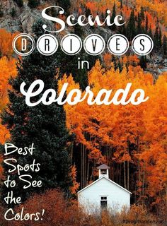 Best Scenic Drives in Colorado to Check Out the Changing Leaves. Kebler Pass, Just outside of Crested Butte makes the cut. It has the largest Aspen grove in Colorado! Vail Colorado, Boulder Colorado, Colorado Springs, Road Trip To Colorado, Moving To Colorado, Colorado Homes, Colorado Mountains, Colorado Hiking, Rocky Mountains
