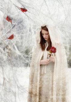 Winter Beauty Photograph by Datha Thompson - Winter Beauty Fine ... fineartamerica.com