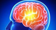 aliments qui peuvent stimuler votre mémoire, aliments qui boostent la mémoire, que manger pour stimuler la mémoire, comment améliorer la mémoire,
