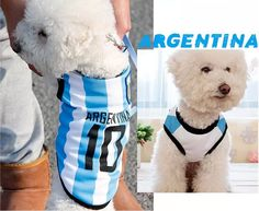 Cheap vest buckle, Buy Quality dog model directly from China vest carrier Suppliers:2014 Free shipping AEGENTINA COPA MUNDIAL dog clothes for dog world cup Football Vest team Uniforms XS - 6XL puppy &amp