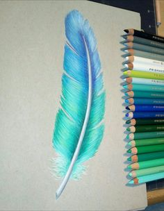 blue-greenish feather by philosophicalphoton on De. - blue-greenish feather by philosophicalphoton on De. Easy Pencil Drawings, Cool Art Drawings, Art Drawings Sketches, Realistic Drawings, Colorful Drawings, Drawing Ideas, Coloured Pencil Drawings, Drawing Faces, Art Illustrations