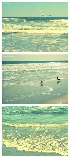 Ocean Photography Set Seagull Beach Aqua Turquoise NJ Waves Home Decor Sale dreamy shabby cottage chic sand Sale #fpoe