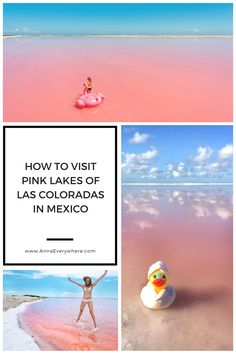 How to Visit Pink Lakes of Las Coloradas, Mexico