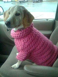 Ravelry: Lion Brand's Flower Dog Sweater in Pink