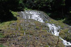 久住の湧水 老い野湧水の流れ滝/大分県竹田市
