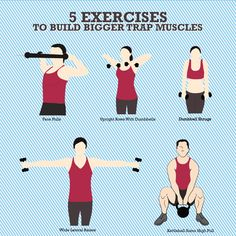 5 Exercises to Build Bigger Trap Muscles   Fitness Republic