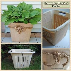 Recycle a broken laundry basket to use as planter What a brilliant way to use an otherwise, useless item destined for the tip? Basket Planters, Outdoor Planters, Concrete Planters, Diy Planters, Garden Planters, Outdoor Gardens, Diy Garden Decor, Diy Home Decor, Pot Jardin