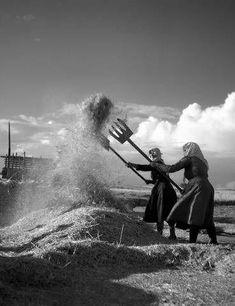 Larissa 1956 by Takis Tloupas - Photos Du, Old Photos, Vintage Photos, Greece Photography, Artistic Photography, Agriculture, Greece History, World Religions, Athens Greece