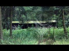 Egy elhagyatott gyerektáborra találtak Magyarországon az erdő közepén, ám mikor bementek borzalmas dolgot láttak! Csak erős idegzetűeknek!