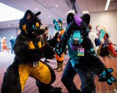 The World's newest photos of anthrocon2016 - Flickr Hive Mind