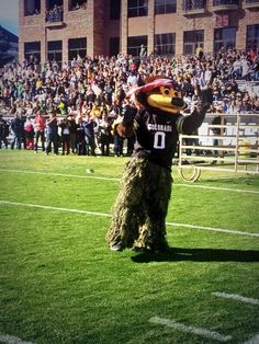 Chip pumping up fans at this years Oregon game!