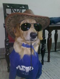 I love cowboys! :)