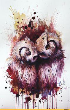 Sunima,art,арт,красивые картинки,совы,акварель