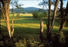52 Scenic Day Trips in and around the DC area...Catoctin Mountains (Courtesy of National Park Service)