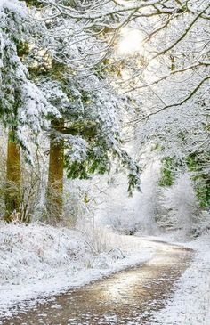 Urban Landscape Photography Tips – PhotoTakes Fantasy Landscape, Winter Landscape, Urban Landscape, Landscape Architecture, Architecture Panel, Beautiful Winter Pictures, Nature Pictures, Snowy Pictures, Winter Szenen