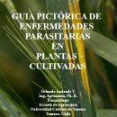 Guía pictórica de enfermedades parasitarias en plantas cultivadas ecoagricultor.com