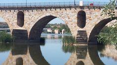Detalle del Puente de Piedra con las Aceñas de Olivares al fondo