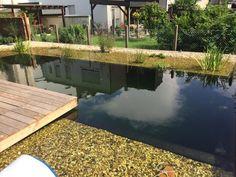 Schwimmteich perfekt für warme Sommertage