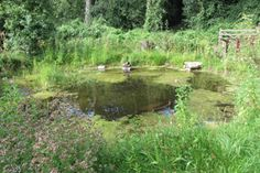 How to dig a pond. Photo by BBOWT