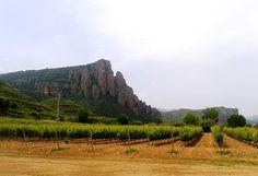 El cerro de Islallana sobre nuestro viñedo.